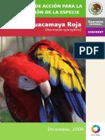Pace_Guacamaya_Roja.pdf