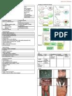 Drugs Used in UTI STD