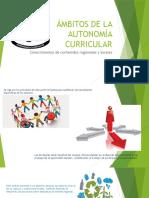 Ámbitos de La Autonomía Curricular
