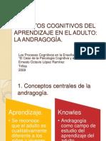 Cognición Del Aprendizaje en El Adulto