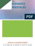 INCENDIOS FORESTALES- Jhon