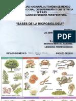 Equipo 1 Bases de Microbiologia