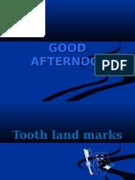 Tooth Landmarks 1