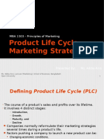 Product Life Cycle Ppt Pilot