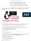 The Complete Guide to _useradd_ Command in Linux - 15 Practical Examples