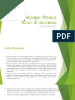 Pengembangan Potensi Rotan Di Indonesia