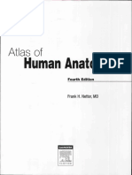 atlas human anatomy NETTER.pdf