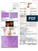 Pituitary Gland Pathology