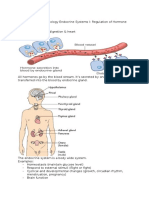 01. Endocrine Systems I - Regulation of Hormone Release