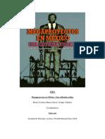 David Contra Goliat La Cementera Del Grupo Carso-Elementia contra pueblos indígenas del Estado de Hidalgo