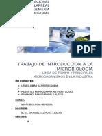 Microorganismos Utilizados en Las Diversas Industrias y Sus Roles