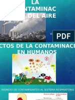 Efectos de La Contaminacion Del Aire