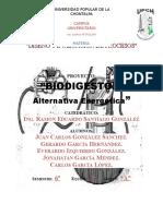 BIODIGESTOR-Diseño y Evaluación de Procesos