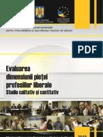 Studiul 4 Strategia DMA Piata Profesiilor Liberale Final Draft