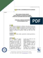 Informe Humedad_Denny (1)