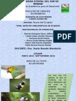 9 Aves Emblematicas - Copia