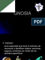 3-gnosia