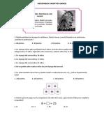 Segundo Ensayo Simce Matemática