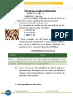 Variedades de caña de azucar en Bolivia