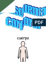 Vocab El Esquema Corporal