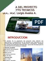 Ingenieria Del Proyecto Pet -236