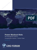 position_paper_power_blackout_risks.pdf