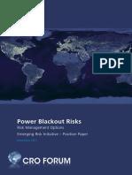 position_paper_power_blackout_risks.pdf