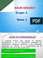 SUELOS EXPANSIBLES