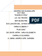 Andrea sarabia-Pliegues cutaneos.docx