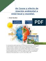 Álbum de Causa y Efecto de Contaminación Ambiental a Nivel Local y Mundial
