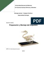 Guía Práctica Armado Esqueleto 2014