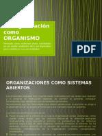 La organizacion como ORGANISMO