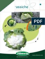 Brassica Vilmorin