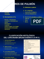 Carcinoma Epidermoide y de Células Pequeñas