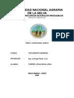 Informe Perfil Longitudinal Simple Paso1