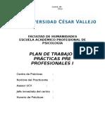 Plan Operativo Ppp i (1)