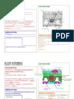 Bio Plant Nutrition