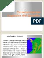 Caracterizacion de La Logistica Del Quindio Final