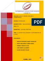 IF_AUDITORIA-TRIBUTARIA_GRUPAL.pdf
