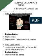 LESIONES A NIVEL DEL CARPO Y 1111.pptx