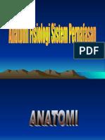 anatomi-fisiologi-sistemc2a0pernafasan1