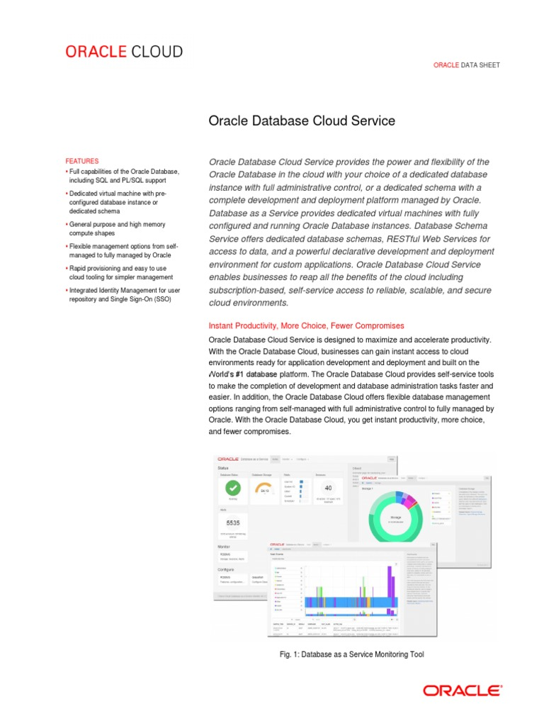 Oracle Database Cloud Service Ds 090414 | Oracle Database | Cloud