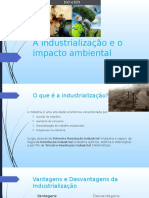 A industrialização e o impacto ambiental- Filosofia.pptx
