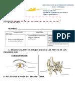 DEMUESTRO EL LOGRO DE MIS APRENDIZAJES ciencia y ambiente tercero.docx