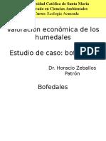 Valoración de Bofedales1