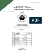 Format Penulisan Laporan Observasi