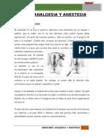 Analgesia y Anestesia.informe (3)[1] (1)