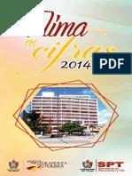Tolima en Cifras 2014