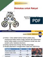 Biokokas PKS v2