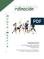 gta07-coordinacion-oculo-motriz.pdf
